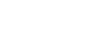 Flair Sport Logo